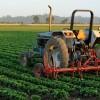VLADA FBiH: 2.700.000 KM poticaja poljoprivrednicima