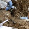 Na području Srebrenice pronađena masovna grobnica