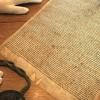 Pronađena 700 godina stara kopija povelje Magna Carta