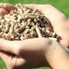 Koja je filozofija grijanja na biomasu pelet? BiH ima svoje predstavnike u proizvodnji peleta na evropskom tržištu